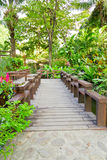 Wood bridge in the garden. Wood bridge and green leaf in the garden stock image