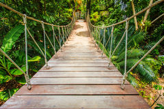 Wood bridge in the garden, Thailand Stock Photography