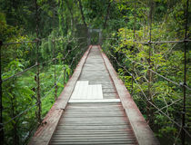 Wood bridge gateway in forest Stock Image