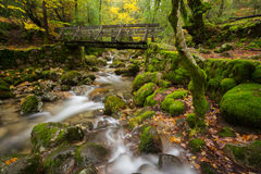 Wood Bridge in Geres National Park. Portugal Royalty Free Stock Photography