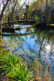 Wood bridge and green lake Royalty Free Stock Photography