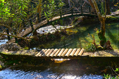 Wood bridge and green lake Royalty Free Stock Photo