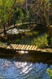 Wood bridge and green lake Royalty Free Stock Image