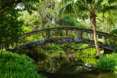 Wood Bridge In The Green Forest Royalty Free Stock Image