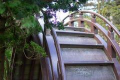 Wood bridge in Japanese Tea Garden. Golden Gate Park, San Francisco, California: 03/23/2018 - cherry blossom next to Japanese Tea Garden that was not ready to stock photography