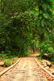 Wood bridge in jungle. Take from way to waterfall in Thailand Royalty Free Stock Photo