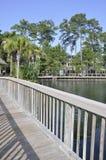 Wood bridge by a lagoon royalty free stock image