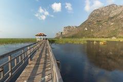 Wood bridge. On the lagoon Stock Photos