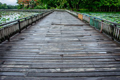 Landscape photo of wooden bridge in the lake Stock Images