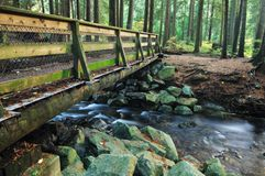 Wood bridge in Lynn Valley forest Royalty Free Stock Photography