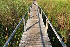 Wood bridge. A bridge make from bamboo it strengthen Royalty Free Stock Image