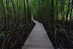 Wood bridge Royalty Free Stock Photo