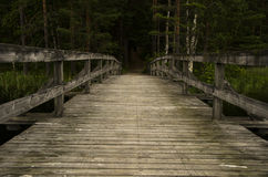 Wood bridge in nature reservation Royalty Free Stock Photography