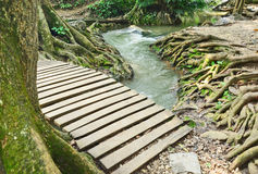 Wood bridge over the canal. Water stream though the little wood bridge Stock Photography