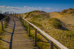 Wood bridge over dunes, vegetation and ocean in background at Ca Royalty Free Stock Photo