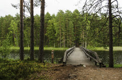 Wood bridge over a lake  in nature reservation. In Finland Stock Photo
