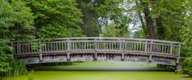 Wood Bridge Over Pond Panorma Stock Image