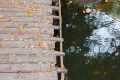 Wood bridge over the pond. At thailand Stock Photography