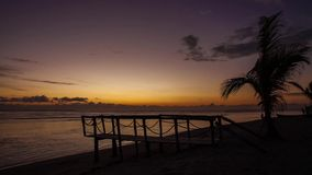 Wood bridge and the palm tree timelapse. Wood bridge and the palm tree on the beach near the ocean sunrise timelapse stock video