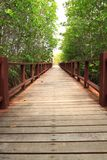 Wood bridge in park Stock Photo