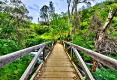 Bridge over a creek. Royalty Free Stock Images