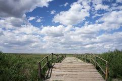 Wood bridge on prairie. Wood bridge on the prairie against a blue sky Stock Photos