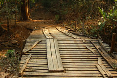 Wood bridge. The wood bridge is in a small village in Chiang mai, Thailand Stock Photo