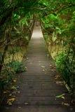 Wood bridge Royalty Free Stock Photos