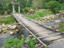 Wood bridge to the jungle Royalty Free Stock Photography