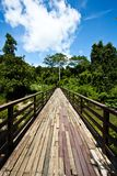 Wood bridge to jungle with Sky Stock Photography