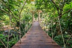 Wood bridge for walking in the garden Stock Photos