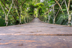 Wood bridge for walking in the garden Royalty Free Stock Image
