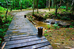 Wood bridge into Waterfall Stock Photography