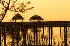 Wood bridge on Wetland Stock Photography