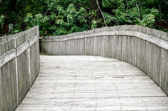 Winding wood bridge in the forest Royalty Free Stock Images