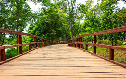 Wood bridge. A wooden bridge leading to the woods Royalty Free Stock Photography