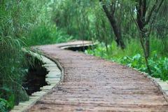 The wood bridge Stock Images