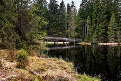 Wood bro över en sjö mellan träd arkivbilder