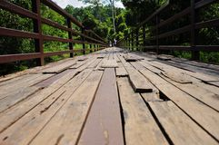 Wood bro Arkivfoton