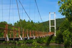 Wood bro Fotografering för Bildbyråer