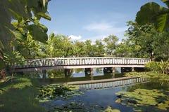Wood bro i en parkera Royaltyfria Bilder