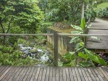 Wood bro och flod Arkivbild