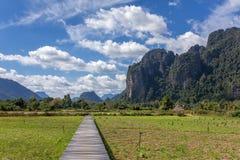 Wood bro- och risfältfältris i Vang Vieng Royaltyfri Foto