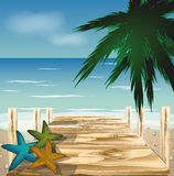 Wood bro på stranden med skal, vektor vektor illustrationer