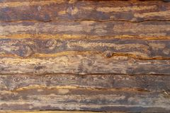 Wood brown grain texture, top view of wooden table wood wall background. Wood brown grain texture, top view of wooden table, wood wall background royalty free stock image