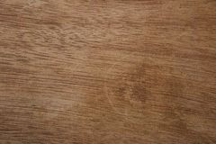 Wood brown texture background. nature photo.  royalty free stock image