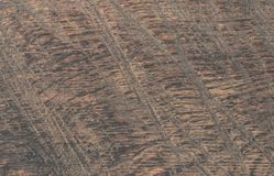 Wood, Brown, Texture, Geology Royalty Free Stock Photo