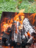 Wood burning in a barbeque grill. Closeup of firewood Stock Image