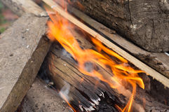 The wood burning in a bonfire Stock Photos
