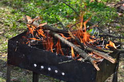 Wood burning in the brazier royalty free stock images